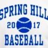 Spring Hil State Champion Bears Plan Fund Raiser