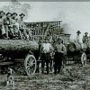 11th Annual Red River Heritage Symposium: Timber Industry of the Red River