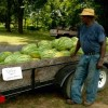 Well-Known Local Watermelon Vendor Has A Full Load