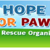 Hope For Paws Sponsors Spay and Neuter Clinic