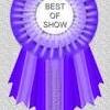 Best of Show Winners