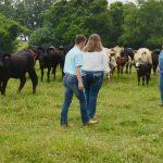 FARM FAMILY 023