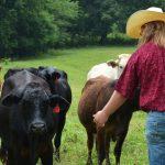 FARM FAMILY 028
